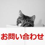 cat-toiawase