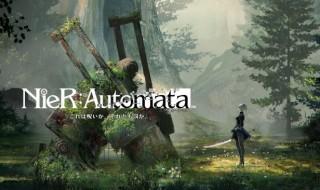 cat-NieR-Automata