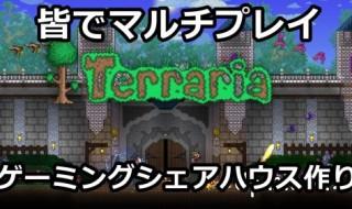 cat-terraria-001-500
