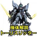gundam-AMX-018ーHADES